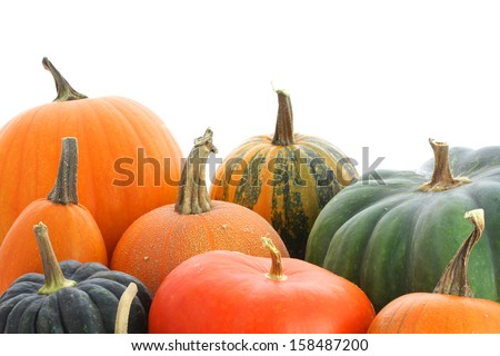 Pumpkins family. Group of fruits isolated on white background - stock photo