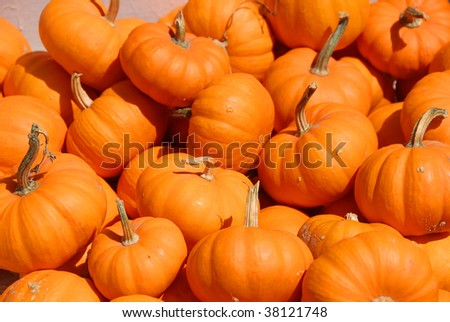 pumpkins for sale - stock photo