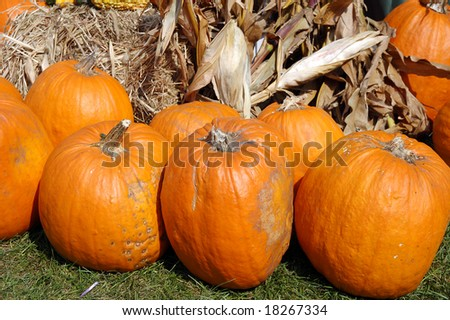 pumpkins in market place