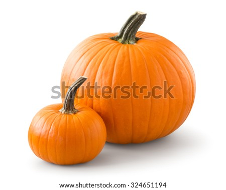 Pumpkins isolated on white background - stock photo