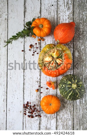 Pumpkins on a Rustic wooden background with space for text