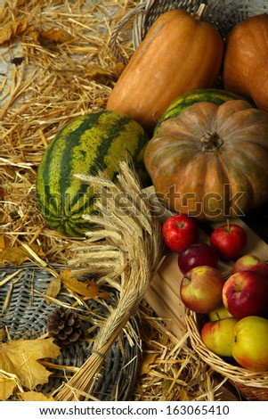 Pumpkins on crate and apples in basket watermelons on straw close up - stock photo