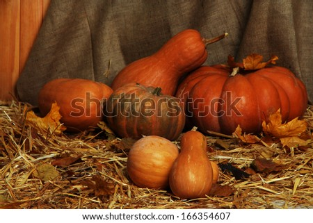 Pumpkins on straw on sackcloth background