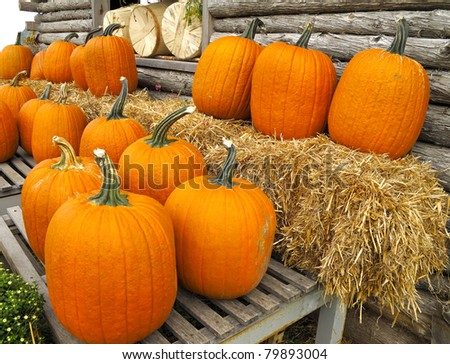 Pumpkins outside barn