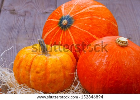 Pumpkins over wooden background