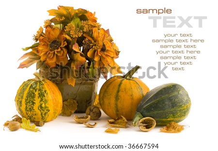 Pumpkins still life on white background (with sample text) - stock photo