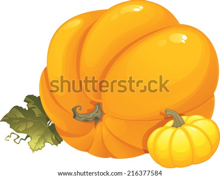 Pumpkins. This image is an seasonal illustration and can be used for Halloween or Thanksgiving Day design. - stock photo