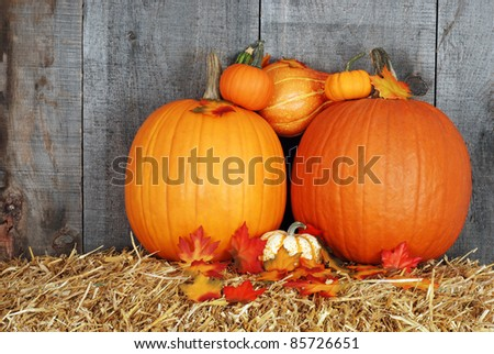 pumpkins with fall leaves - stock photo