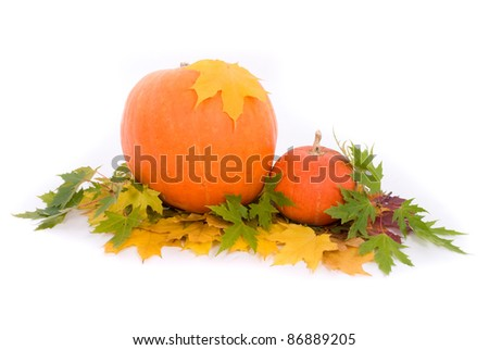 Pumpkins with fall leaves on white background