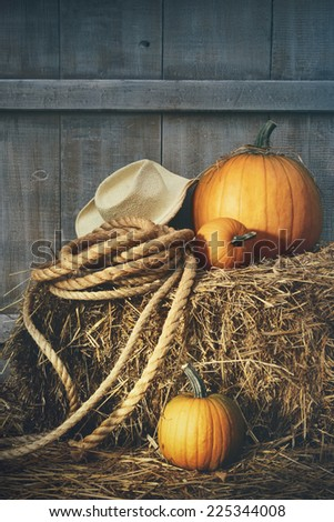Pumpkins with rope and hat on a bale of hay - stock photo