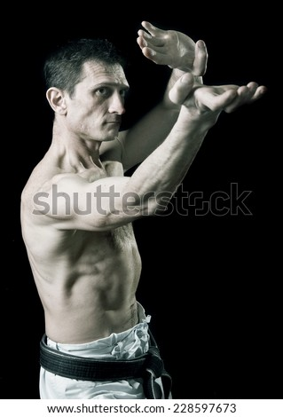 punch.figure in the karate fighting stance on a black background.hand-to-hand fighting.sport.Black-and-white image