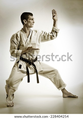 punch.figure in the karate fighting stance on a white background.Sepia.