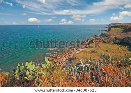 Punta Penna, Vasto, Abruzzo, Italy: landscape of the cliff in the coast of the italian Adriatic sea with wild plants and cactus