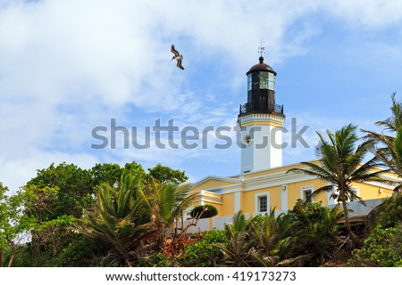 Punta Tuna Lighthouse with a pelican flying over in Puerto Rico