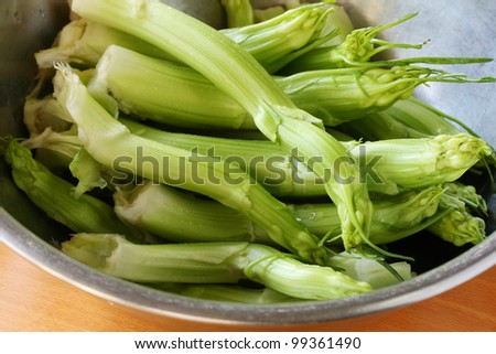 puntarelle shoots, puntarelle salad, cooking process