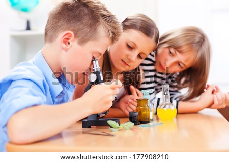 Pupils in biology class, looking at plant through microscope - stock photo