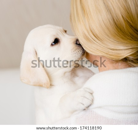 Puppy of Labrador kisses the face of woman in white sweater - stock photo