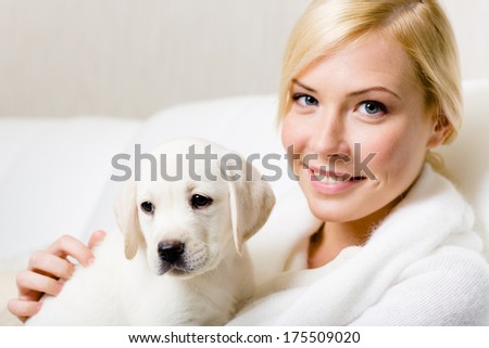 Puppy of Labrador sitting on the hands of woman