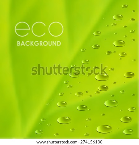 Pure water drops on green leaf. Raster version. - stock photo