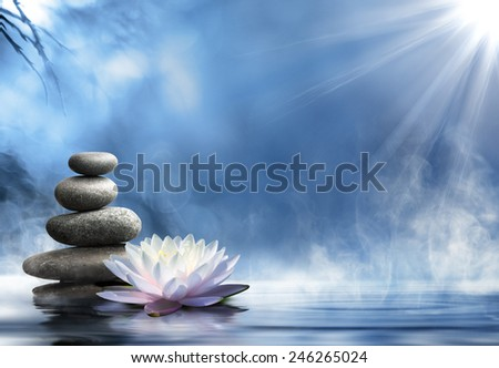 purity in the zen massage - stock photo