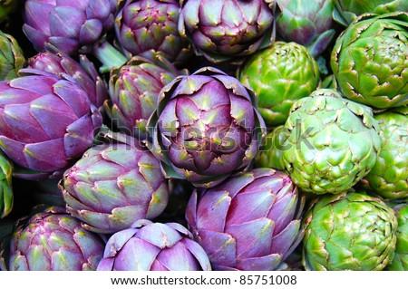 Purple and Green Artichokes - stock photo
