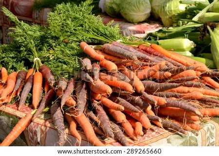 Purple and Orange Carrots from the ground to the farmers market to your table - Fresh healthy living is easy with bountiful vegetables - stock photo