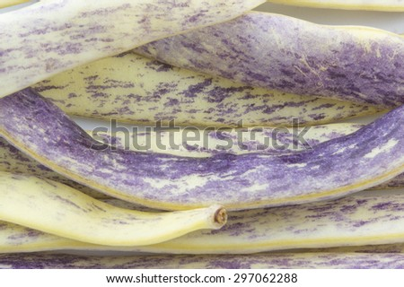 Purple beans closeup forming background - stock photo