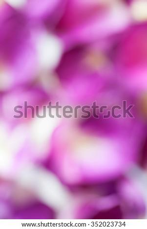 Purple bokeh of rose leaves - stock photo