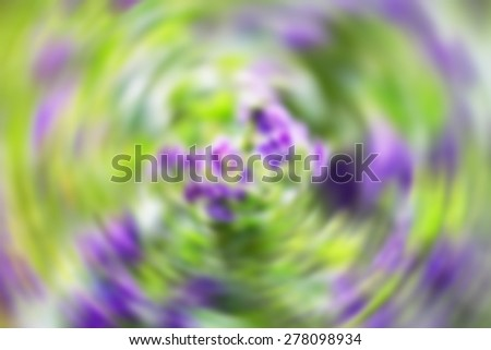 Purple flower background - stock photo