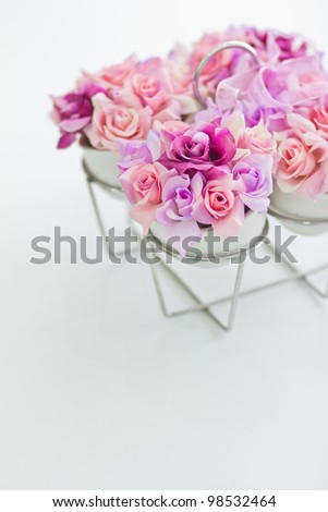 purple flower with white background.