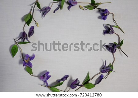 https://thumb1.shutterstock.com/display_pic_with_logo/167494286/720412780/stock-photo-purple-flowers-720412780.jpg