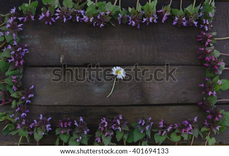 Purple flowers forming a frame and a daisy in the middle on wooden board - flat lay