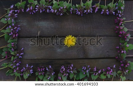Purple flowers forming a frame and a dandelion in the middle on wooden board - flat lay
