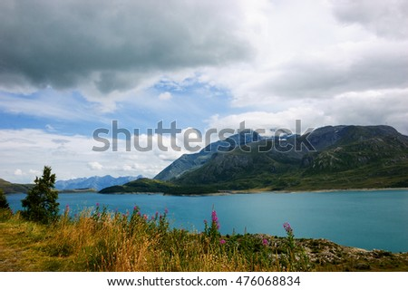 Purple flowers near lake and Alps at background. Alpine view. Cloudy sky. Vanoise National Park. (Savoie, France)