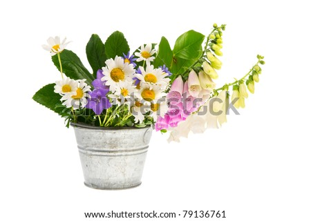 foxglove flower and white daisies and other wild flowers in bucket