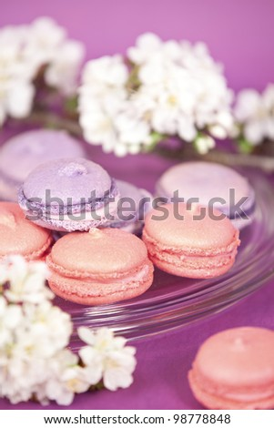 Purple french macaroons with cherry branch - stock photo