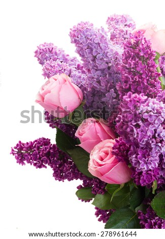 Purple Lilac flowers with pink roses isolated on white background - stock photo