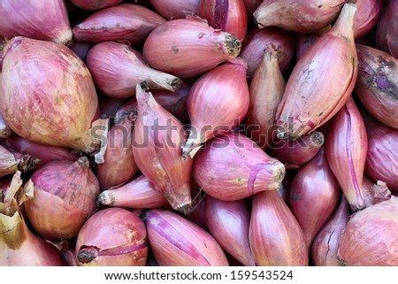 purple onion bulbs for background