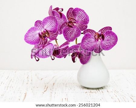 purple orchid flowers in vase on a wooden table - stock photo