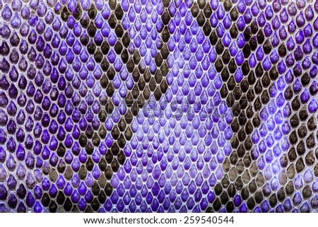 Purple  python  leather, skin texture for background. - stock photo
