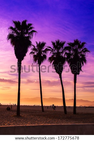 Purple sky sunset at Venice Beach, Los Angeles California. People sitting on the beach enjoying the sunset. Travel concept - stock photo