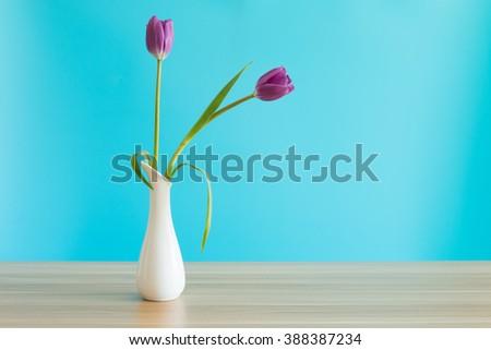 Purple tulips in a vase - stock photo