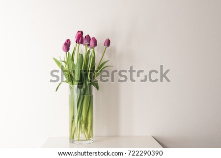 Purple tulips in tall glass vase on white table against neutral background with copy space