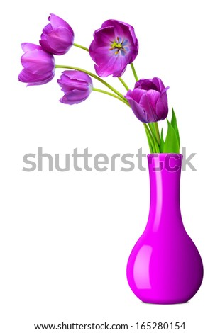 purple tulips in vase isolated on white background  - stock photo