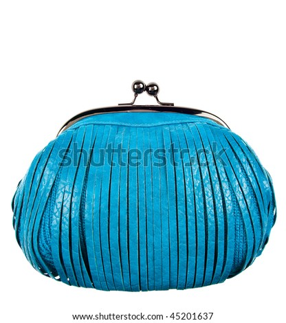 purse - stock photo