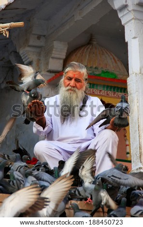 PUSHKAR, INDIA - FEBRUARY 23: An unidentified man feeds pigeons near holy lake on February 23, 2011 in Pushkar, India. Pushkar is one of the five sacred pilgrimage sites for devout Hindus.