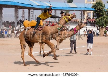 PUSHKAR, INDIA - NOVEMBER 21, 2012: Pushkar Camel Mela In India. This fair is the largest camel trading fair in the world. In the program of the fair is the camel race. - stock photo