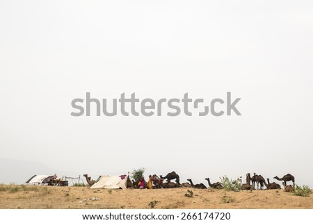 PUSHKAR INDIA-OCT 31 : outdoor camp on sanddune area around Pushkar city, they live in tent for oversee their camel on october,31, 2014, india - stock photo