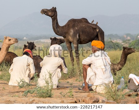 PUSHKAR, INDIA - OCTOBER 27, 2014: Unidentified Indian men attended the annual Pushkar Camel Mela. This fair is the largest camel trading fair in the world.