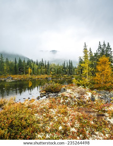 Putelichorr mountain hidden in clouds reflected in shallow Polygonal northern taiga forest lake with lichen-covered rocks in foreground - stock photo